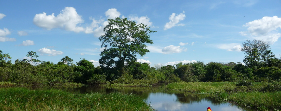 The road to Rurrenabaque…